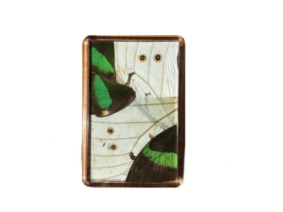 WHITE AND GREEN FRIDGE MAGNET