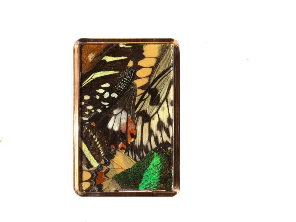 MIXED WING FRIDGE MAGNET